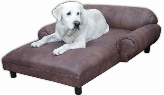 camas para perros3